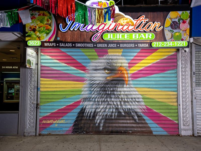 Audubon Mural Project: Photographs by Gail Albert Halaban