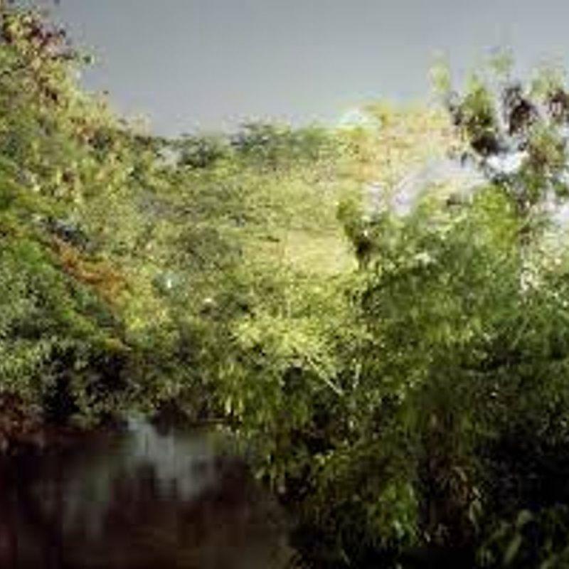 Myth Nature - Landscape without Horizon