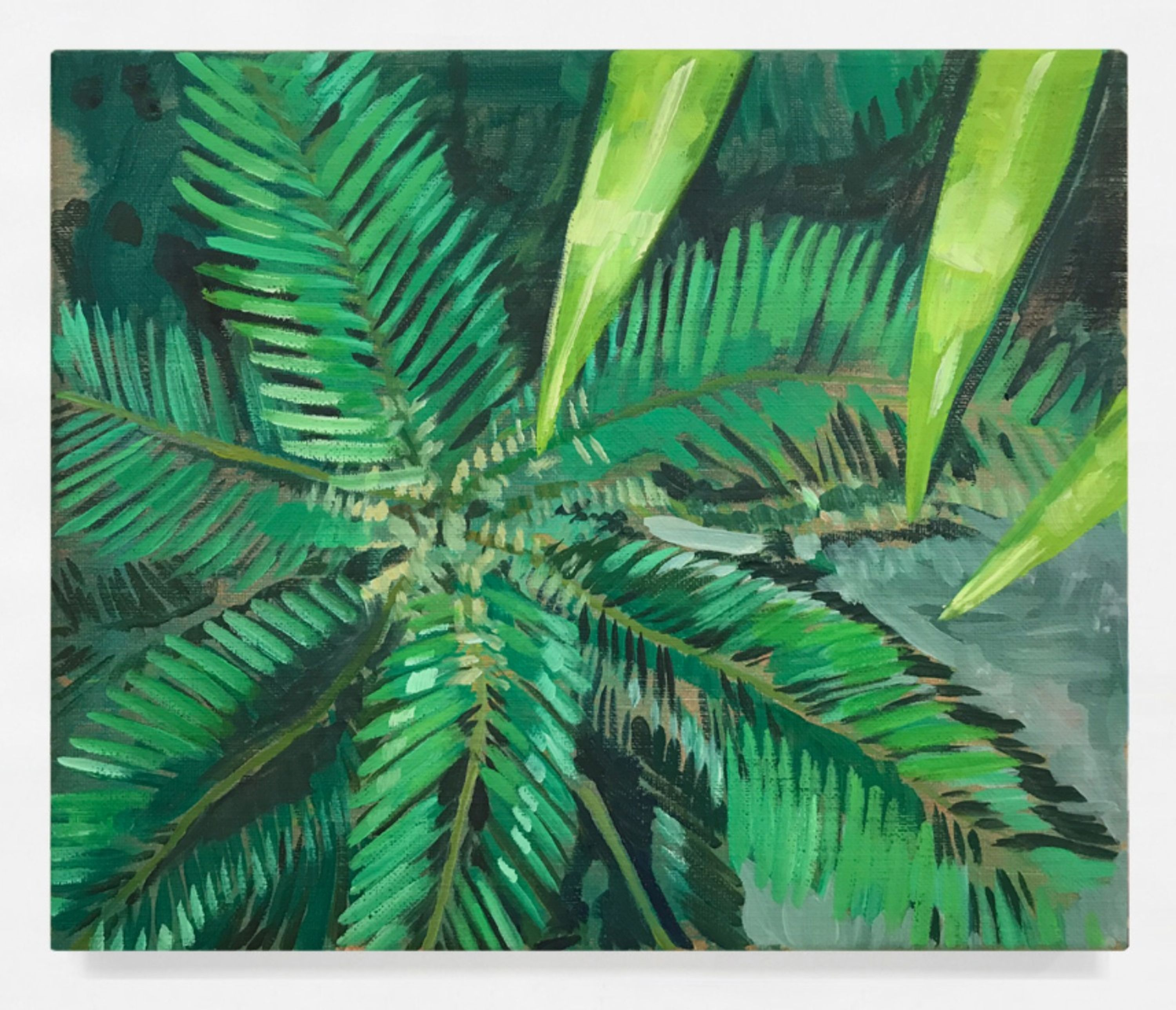 Palm on the Floor 2 by Ditte Ejlerskov, Galleri Specta
