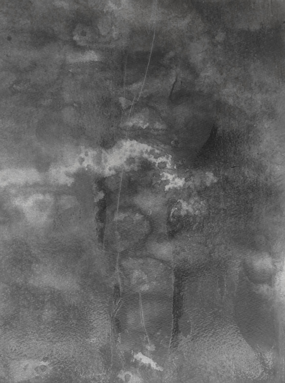 Placenta 2  by Paula Klien, aquabitArt gallery   Berlin