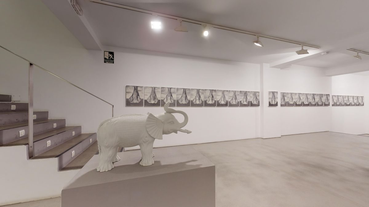 The Elephant (an intermission)
