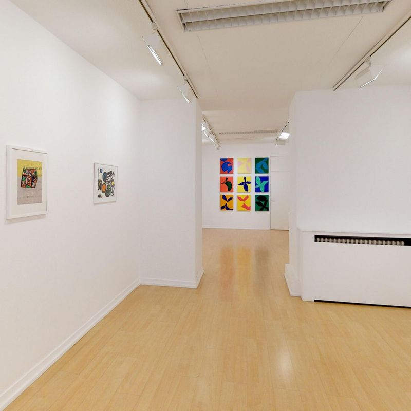 Galerie Oniris - Florent Paumelle
