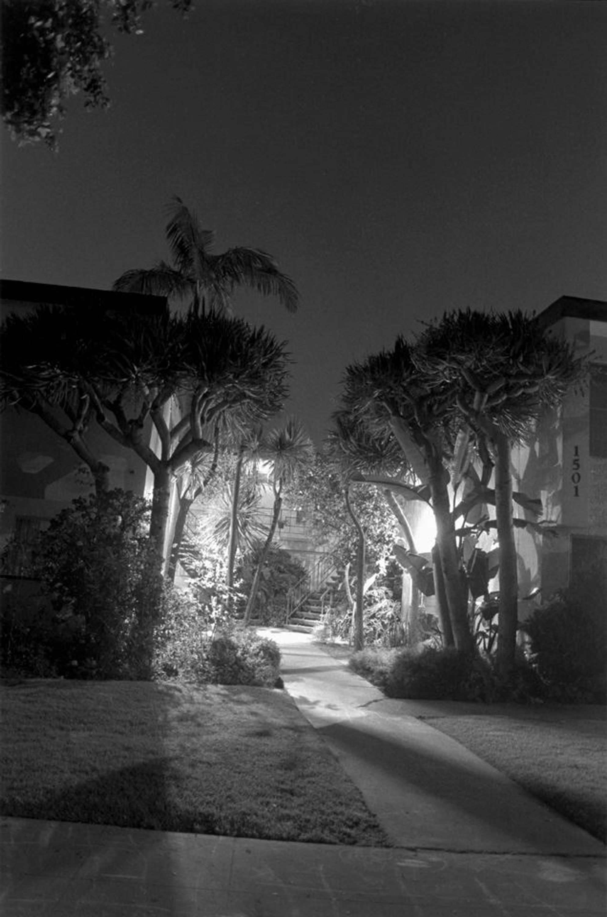 Nightwalk No. 23, 1995 by Henry Wessel, Hammer Consulting