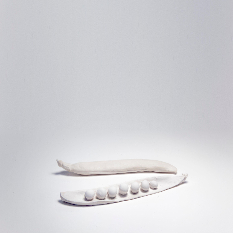 Pysum Sativum by Luna Bengoechea, Lucía Mendoza