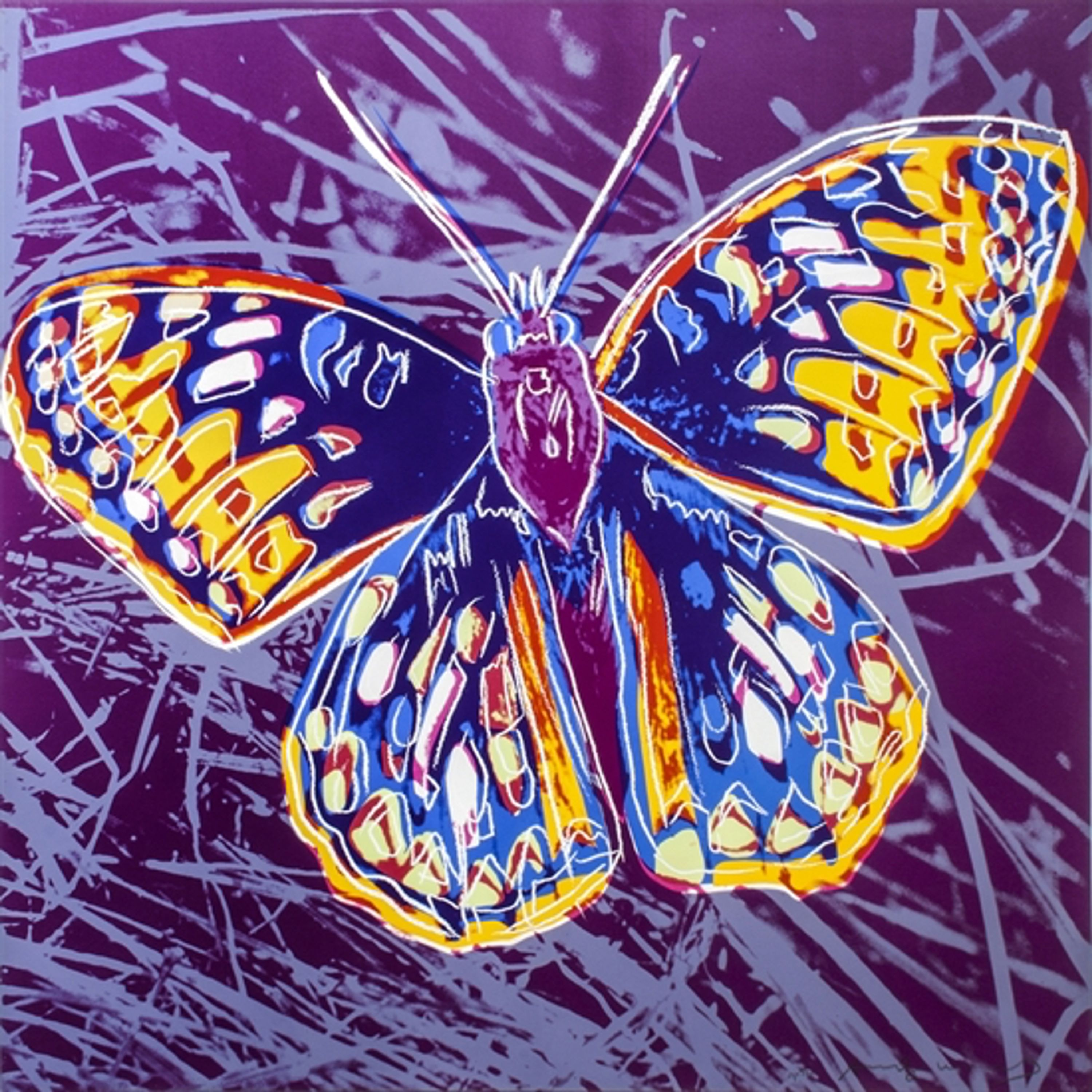 Butterfly by Andy Warhol, Fausto Gasparetto