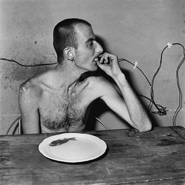 Artwork by Roger Ballen, Michael Perch